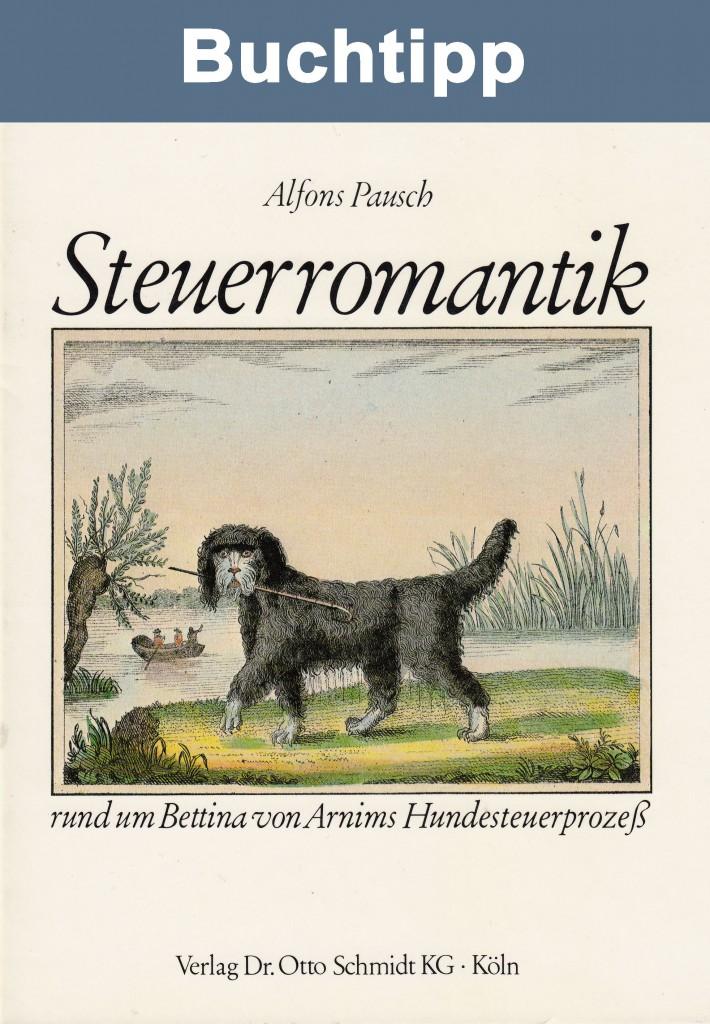 Buch Steuerromantik